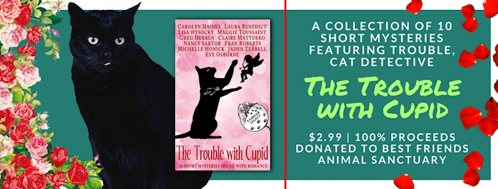 [banner: The Trouble With Cupid]