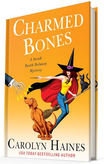 [cover: Charmed Bones]