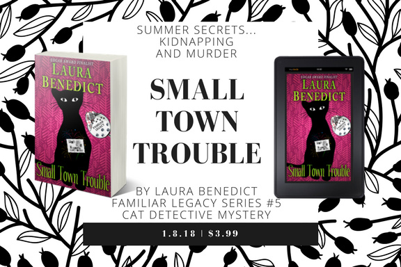 [banner: Small Town Trouble]
