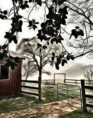 [Barn Painting]