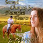 GIVEAWAY: Sweet Inspirational Romance from Shoshanna Gabriel!